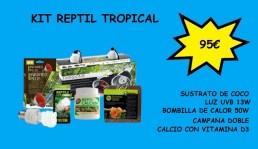 KIT REPTIL TROPICAL8